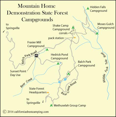 Methuselah Group Campground