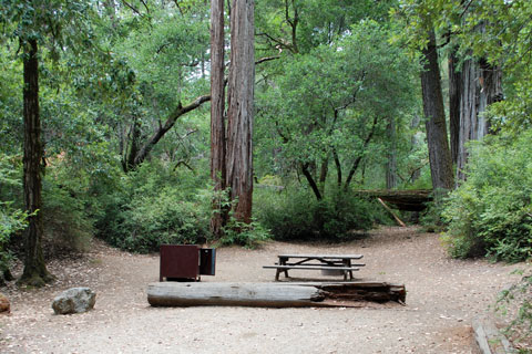 Blooms Creek Campground - Big Basin Redwoods State Park