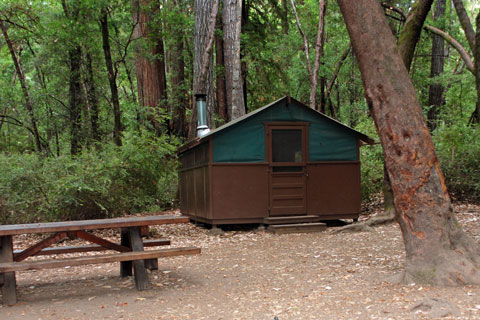 Nice Tent Cabin In Huckleberry Campground, Big Basin State Park, CA