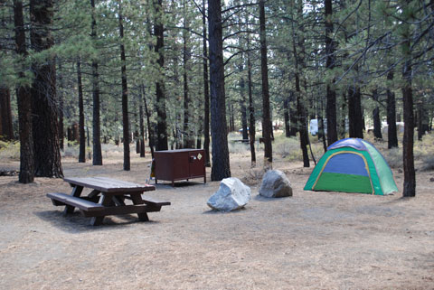 New Shady Rest Campground, Mammoth Lakes, CA