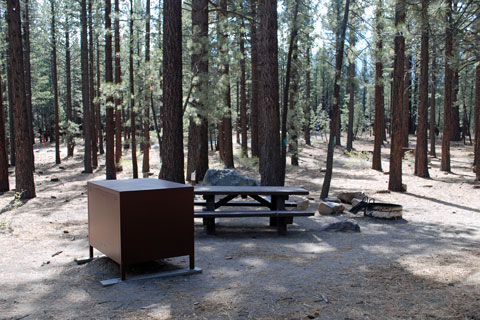 Old Shady Rest Campground, Mammoth Lakes, CA