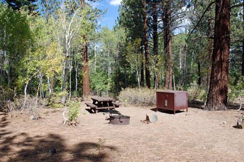 Sherwin Creek Campground, Mammoth Lakes, CA