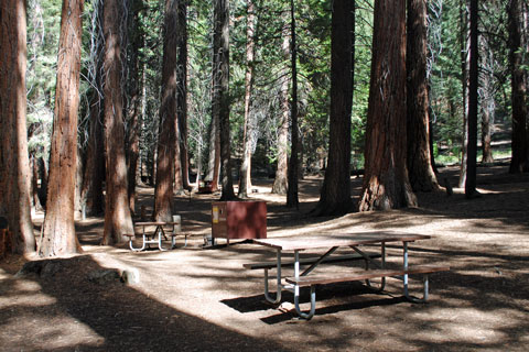 Atwell Mill Campground Sequoia National Park