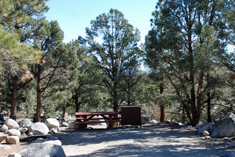 Tuff Campground - Inyo National Forest