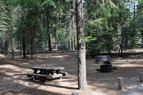 Stony Creek Campground - Sequoia National Forest