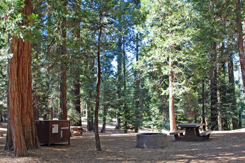 Sunset Campground - Grant Grove, Kings Canyon National Park