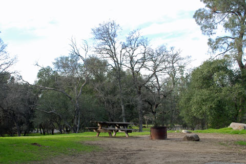 Beals Point Campground Folsom Lake