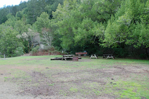 Samuel P  Taylor State Park Campground