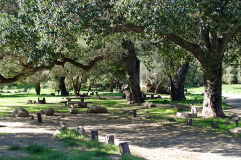 Paradise Campground - Los Padres National Forest