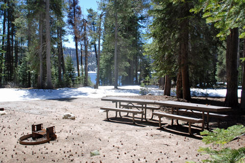 College Campground Huntington Lake