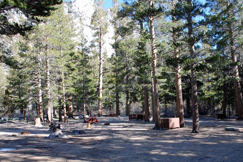Palisade Group Camp, Rock Creek, Inyo National Forest, CA