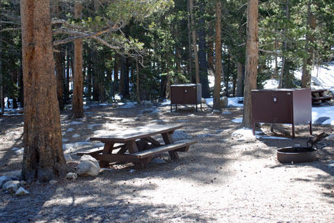 Pine Grove Campgrounds Inyo National Forest