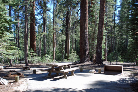 Trapper Springs Campground - Courtright Reservoir