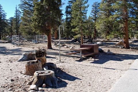 Horseshoe Meadow Equestrian Campground, CA