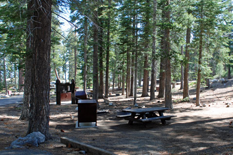 Bayview Campground Lake Tahoe