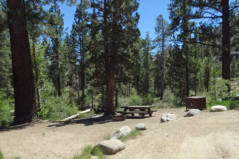 Leavitt Meadows Campground - Humboldt-Toiyabe National Forest