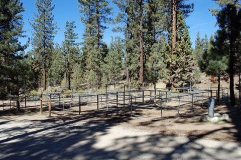 Wild Horse Equestrian Campground San Bernardino National