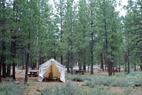 Logger Campground - Stampede Reservoir