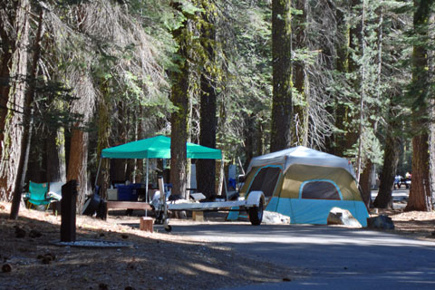 Pass Creek Campground at Jackson Meadows Reservoir
