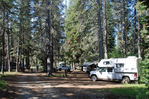 Gold Lake Campground - Plumas National Forest