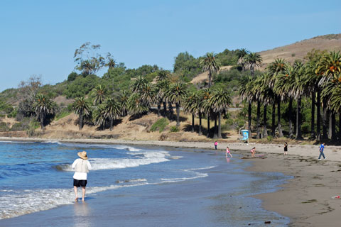 LOS CUERNOS REFUGIO  CABANAS  DOMOS   C ING   UPDATED 2018 furthermore El Capitan State Beach C ground likewise Refugio State Park C ing   Santa Barbara  California   YouTube in addition C ground Reviews – C ing Moms moreover El Capitan Beach and Refugio State Beach in addition Bike Santa Barbara County   C ing further  furthermore  likewise Refugio State Beach   C site Photos and C ing Information as well C ground Reviews – C ing Moms as well State Beach C ground Ca Refugio Reviews – deltaadventure info also  as well Refugio State Beach additionally San Elijo State Beach C ing  C site Photos and Information together with Where to go beach c ing on California's coast together with Refugio State Beach C ground. on refugio campground map