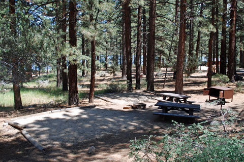 Indian Creek Campground, Indian Creek Reservoir, Humboldt Toiyabe National  Forest, CA