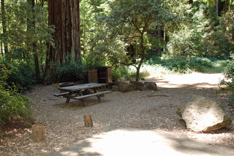 Huckleberry Campground - Richardson Grove State Park on
