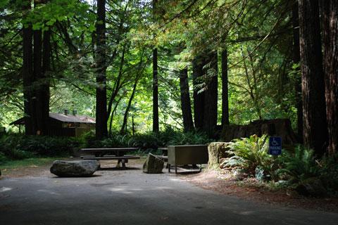 Mill Creek Campground Del Norte Coast Redwoods State Park