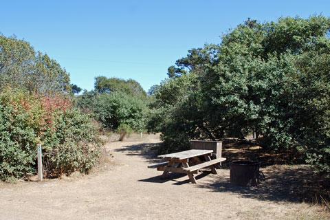 Manresa State Beach Campground Ca