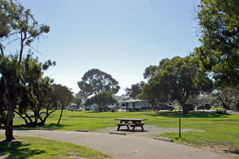 Pismo State Beach Campgrounds